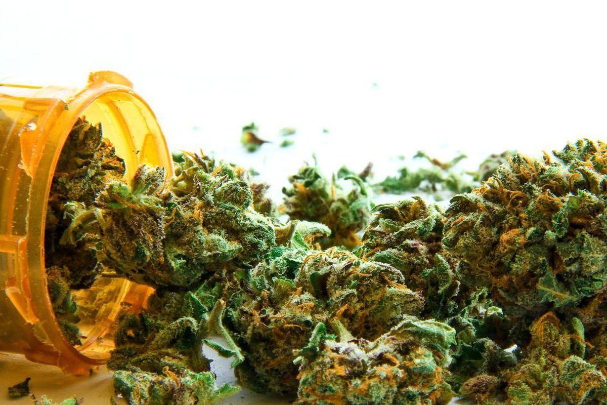 Kilka Ciekawych Faktów o Marihuanie Medycznej, AmsterdamSeeds
