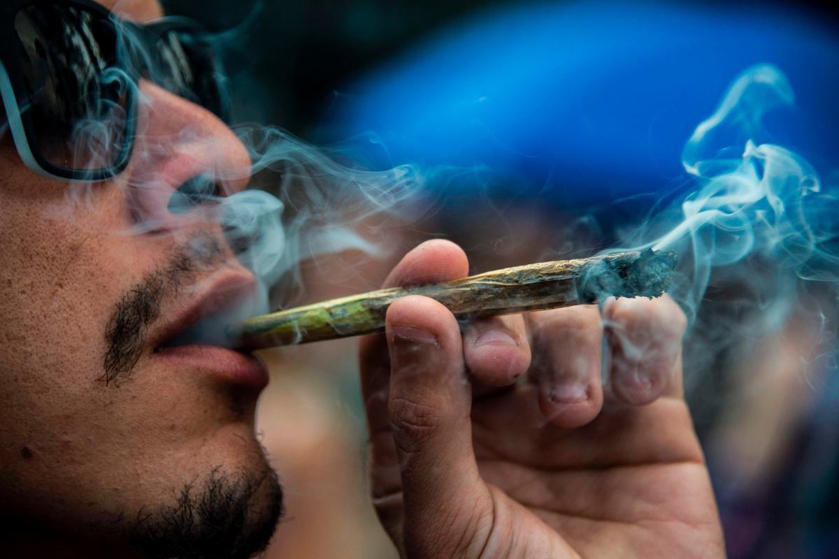 Narkotyki   Szkodliwość i Dostępność, AmsterdamSeeds